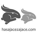 Logo portalu hasające zające